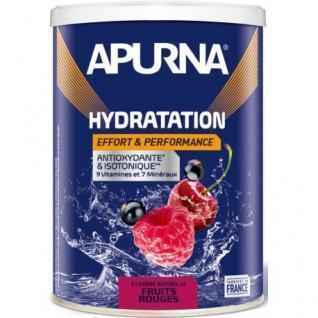 Energiegetränk Apurna Fruits rouges - 500g