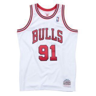 Jersey Chicago Bulls Dennis Rodman